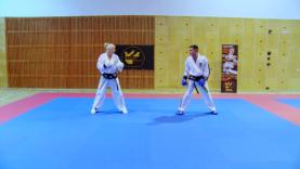 Taekwondo_10slajdrecedollyo.0003