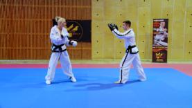 Taekwondo_14receNaeryo.0000