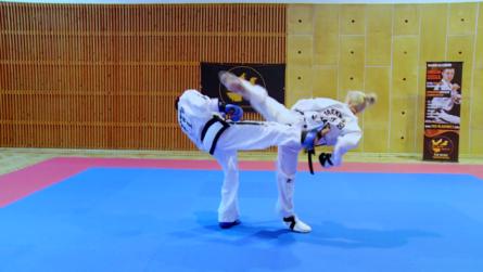 Taekwondo_1_dwitBandae (1).0000