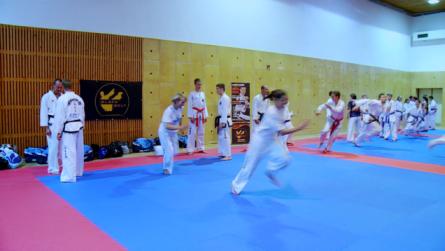 Taekwondo_20tickandrun.0001