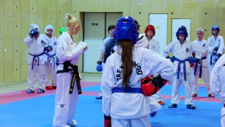 Taekwondo_22avoiddollyo.0001