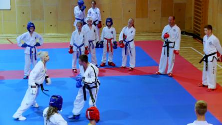Taekwondo_23oneAvoid.0000