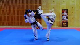 Taekwondo_35NaeryoNaDollyo.0003
