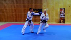 Taekwondo_36SkrotNaTylneDol.0001