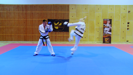 Taekwondo_4.0002