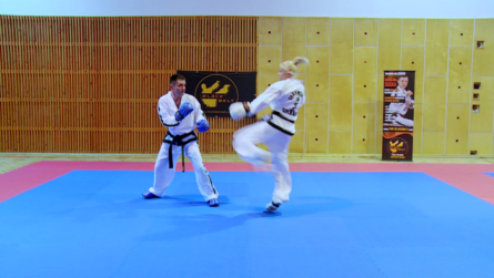 Taekwondo_5_dollyoNaeryo.0003