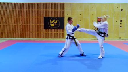 Taekwondo_8dolwtfstyle.0002